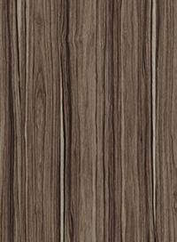 Індійське-Дерево-0231