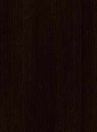 Сосна-Лоредо-Темна-0406